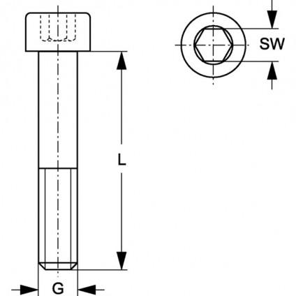 SRS IS 30-100 V4